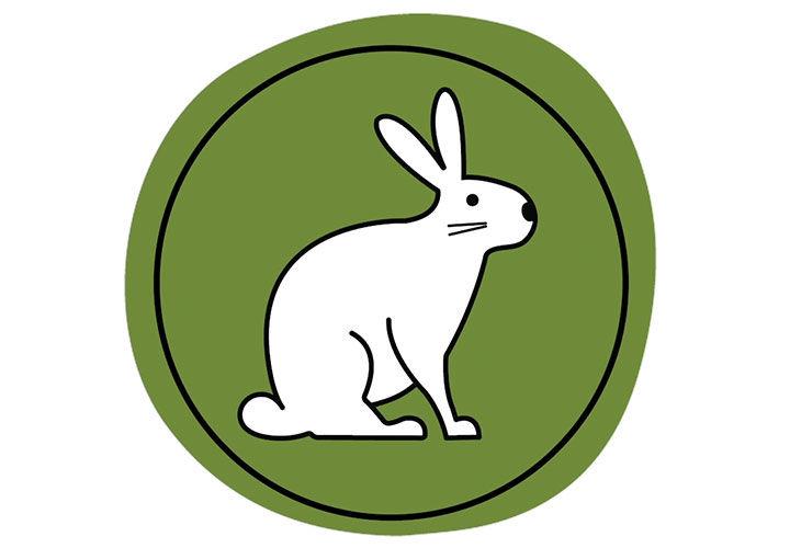 Ein Hase auf einem grünen Hintergrund